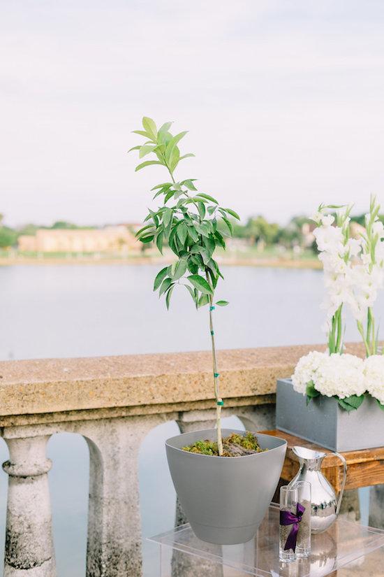elegant-lake-mirror-wedding-kj-0623