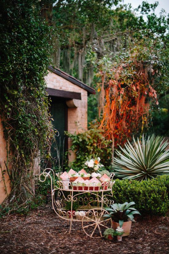 pinewood-estate-wedding186