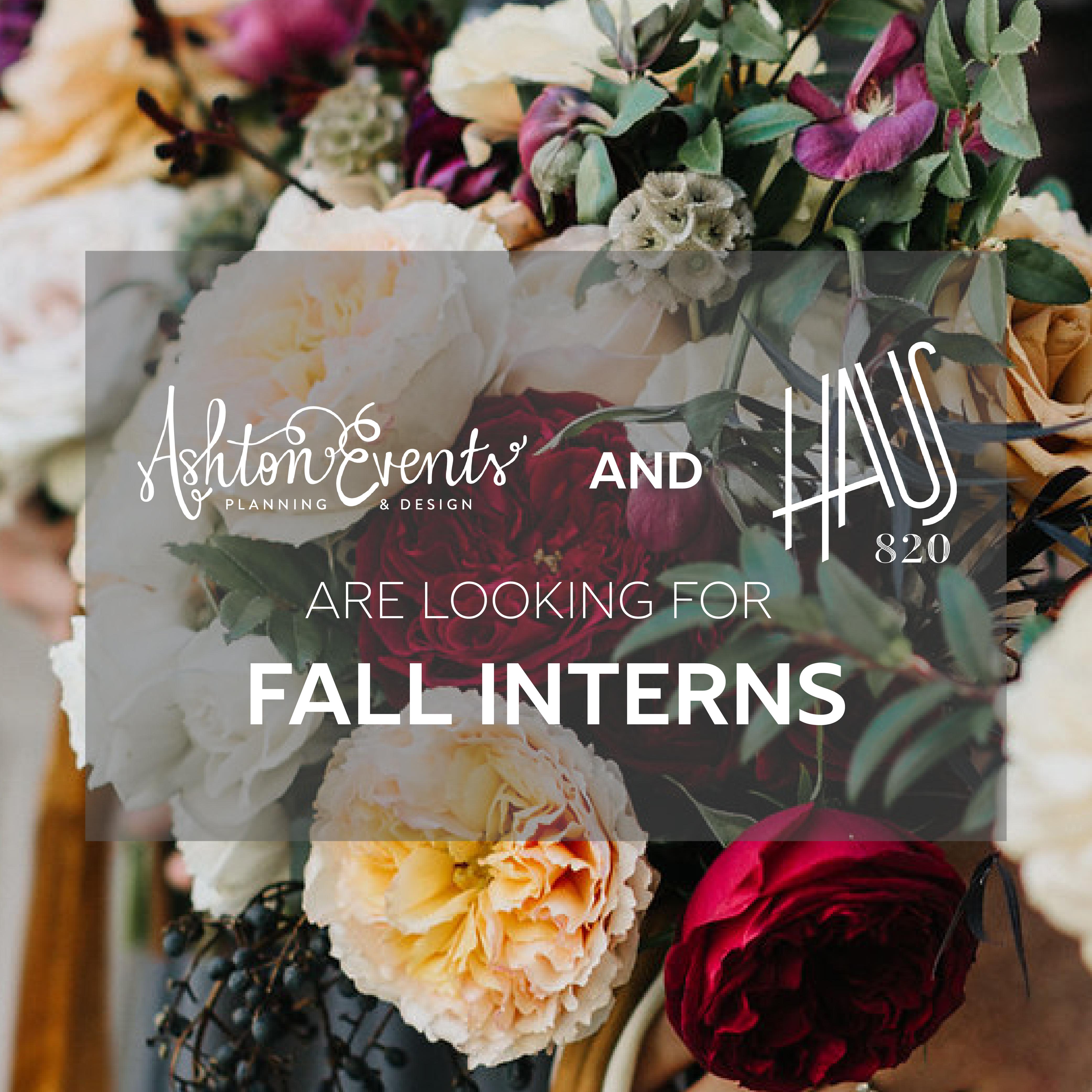 We're Hiring! Fall 2018 Internship